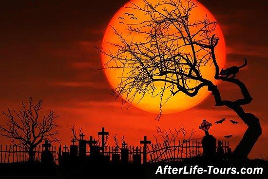Moonlit Cemetery - Oakwood Cemetery