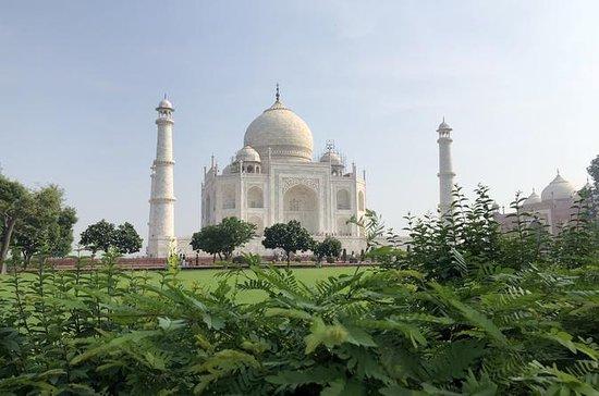 Full dag Taj Mahal & Fatehpur sikri...