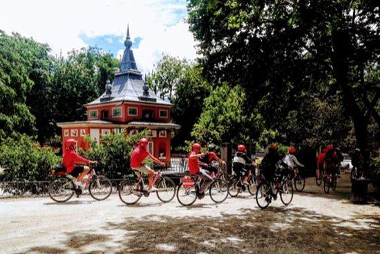 Tour en bicicleta: Parque del Retiro...
