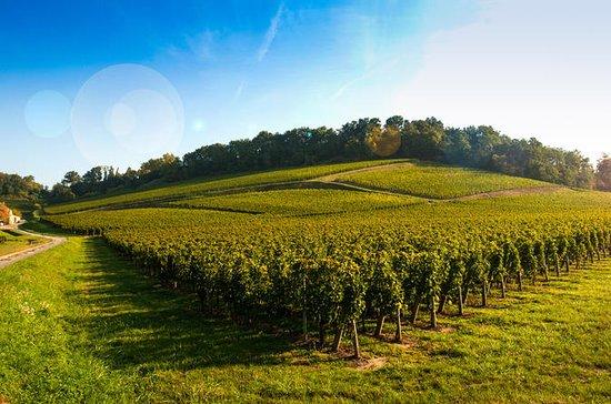 Bordeaux Organic & Bbiodynamic Wine...