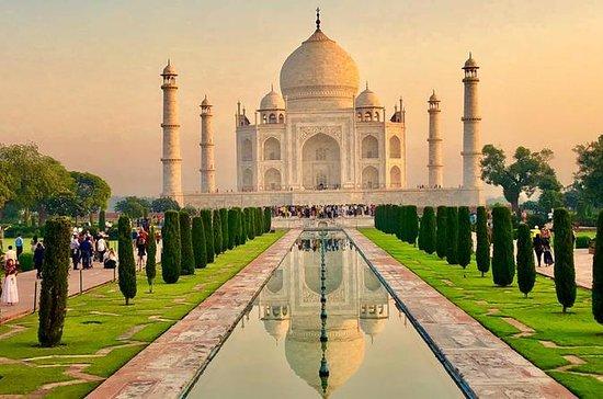Dagstur til Taj Mahal og Agra Fort