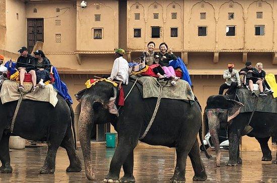 Excursión privada el mismo día a Jaipur...