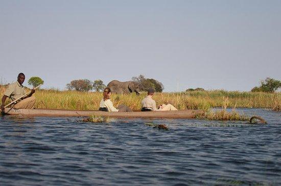 Het beste van Botswana Adventure