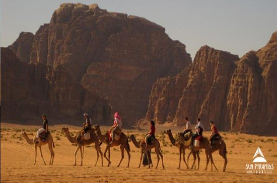 Fyrhjuling med Camel ride och Beduin ...