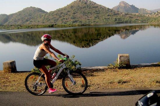Tour in bicicletta nella città dei