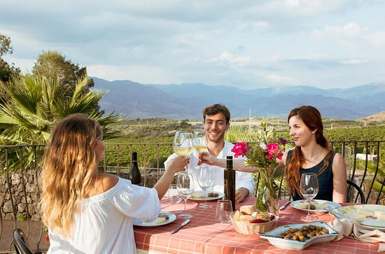 Small Group Sicily Food & Wine Lovers...