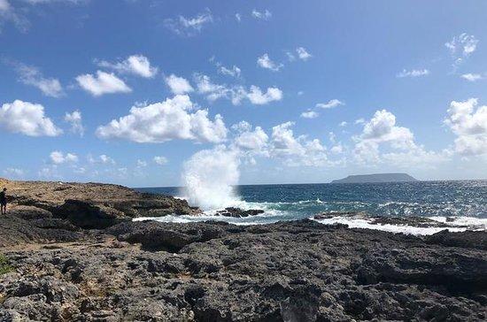 Guadeloupe Shore Excursion...