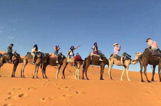 3 Tage Marrakesch Wüste Tour nach...