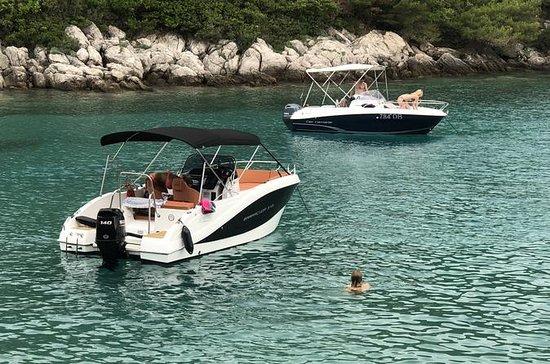 Tour privado de 2 horas a las islas...
