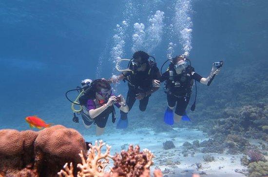2 jours de plongée à Marsa Alam