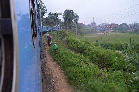 Nanu Oya, Srí Lanka: train view