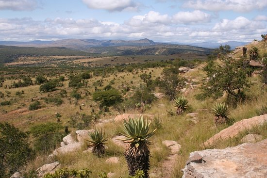Rorke's Drift, Sør-Afrika: hills to the East