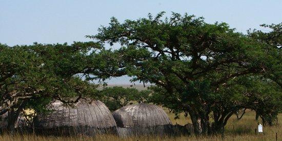 Rorke's Drift, Sør-Afrika: Zulu hut