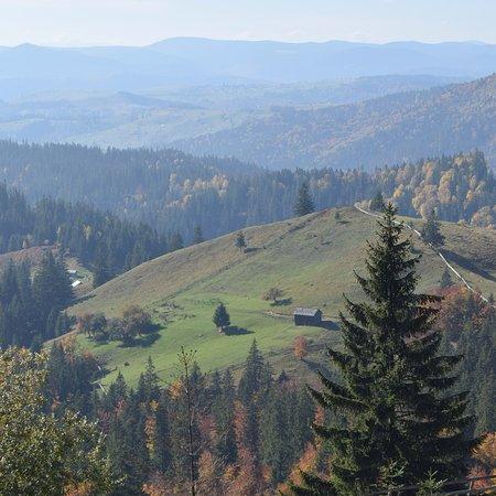 Sucevita, Ρουμανία: photo0.jpg