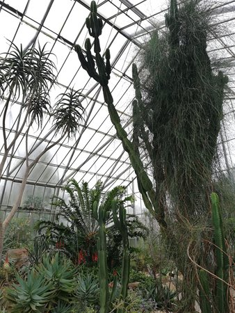 Royal Botanic Garden Edinburgh: Foto 25