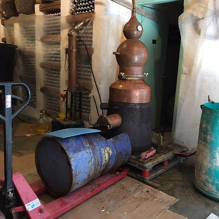 Manalis Winery: photo5.jpg