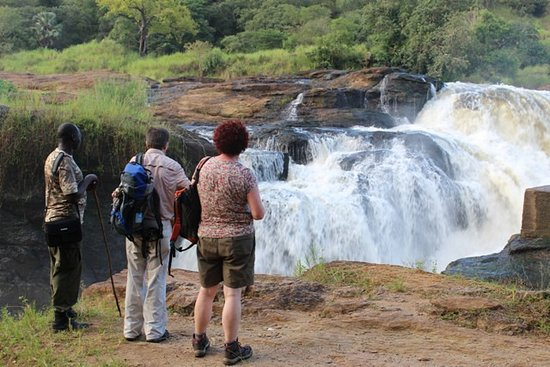 Murchison Falls National Park: time to look at nature