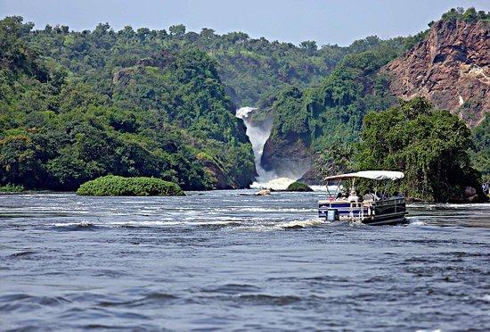 Murchison Falls National Park: boat cruise