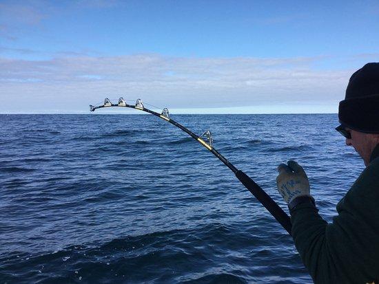 Seacoast New Hampshire Sportfishing: Big Tuna
