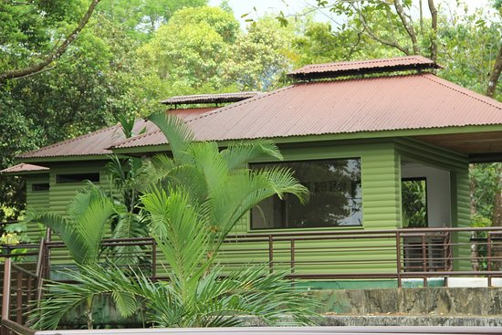 Ciudad Cortes, Costa Rica: Cute and cosy treehouse rooms!