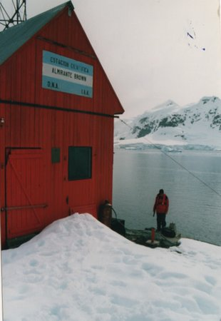 Port Lockroy: La base Almirante Brown (Baia Paradiso)
