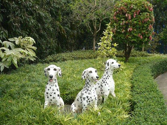 สวนนงนุช: Une des nombreuses statues du parc , sur le coup j'ai cru que c'était des vrais chiens . La chal
