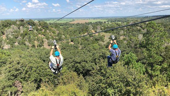 Cedar Creek, TX: Soar side-by-side over the beautiful Lost Pine forest at the Zip Lost Pines zip line tour.