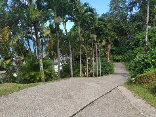 Anse Boileau, Σεϋχέλλες: IMG_20181007_100231_large.jpg