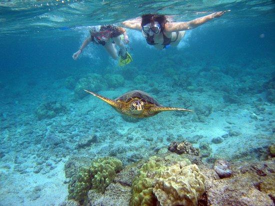 SnorkelRide Kauai