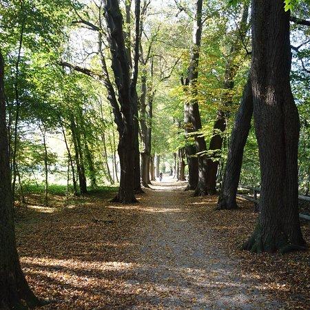 Attnang-Puchheim, Austria: Puchheimer Au