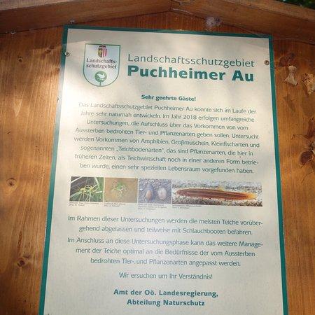 Attnang-Puchheim, Østerrike: Puchheimer Au