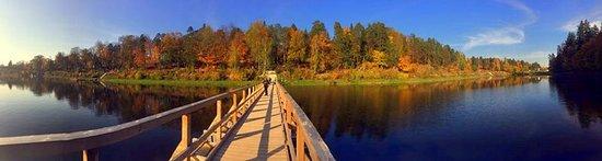 Ogre, Latvia: Панорама на высокий берег