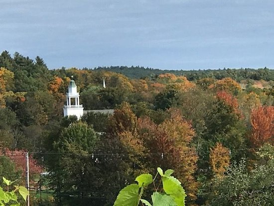 J's Restaurant: View from J's restaurant in Bolton at Nashoba Valley Winery