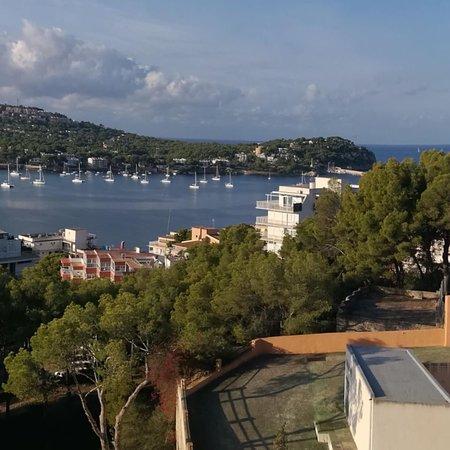 Photo0 Jpg Picture Of Vista Club Apartments Santa Ponsa Tripadvisor