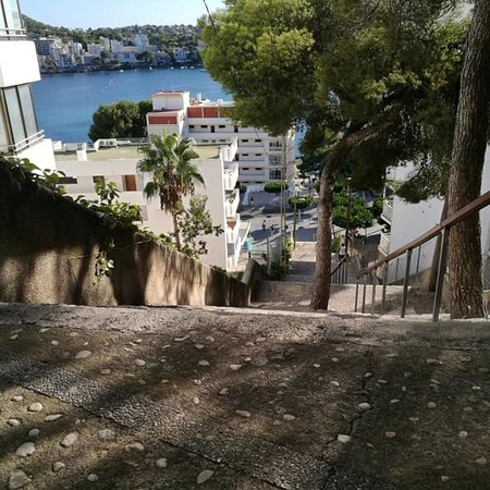 Photo2 Jpg Picture Of Vista Club Apartments Santa Ponsa Tripadvisor