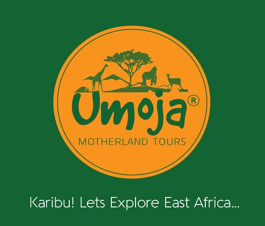 ‪Umoja Motherland Tours Limited‬