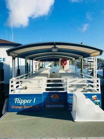 Flipper I - our Dolphin boat