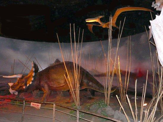 Se Ven Muy Bien Realizados Picture Of Parque Zoologico Huachipa Lima Tripadvisor Una manera fácil y rápida para encontrar trabajo entre 15.800+ nuevas ofertas de empleo en perú. picture of parque zoologico huachipa