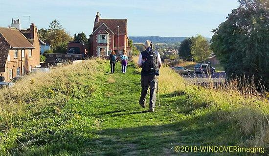 Wareham Saxon Wall Walk