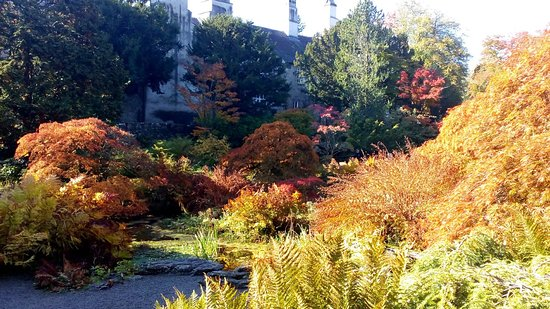 Sizergh Castle: Sizergh garden