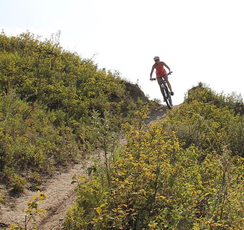 The University of Calgary Outdoor Centre has bike lessons, rentals and repair courses.