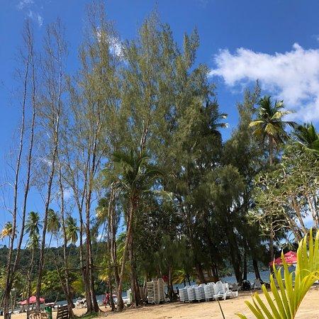 Maracas Bay照片
