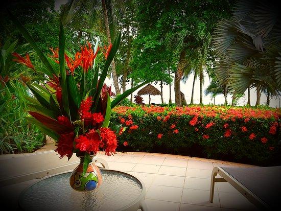 Alma del Pacifico Beach Hotel & Spa Picture
