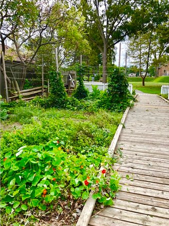 Fort Malden National Historic Site: The cottage garden still had a lot of life even at the end of September