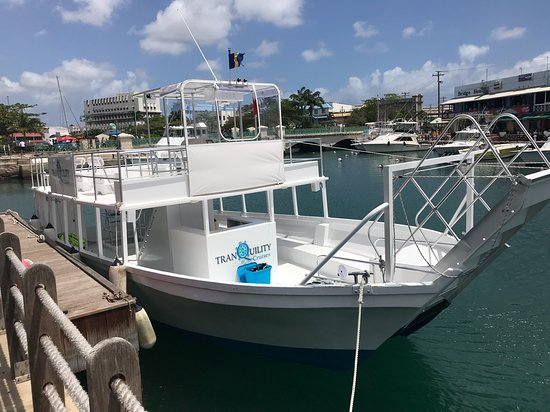 Tranquility Cruises: Tranquility