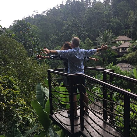 Hanging Gardens of Bali: photo1.jpg