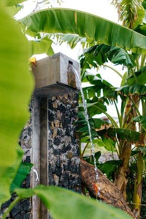 Palo Verde Sustainable Hotel Image