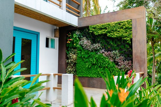 Palo Verde Sustainable Hotel: Vertical garden and main entrance