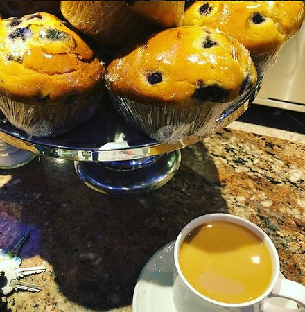 Springfield - Springfield Township, PA: Muffins Galore