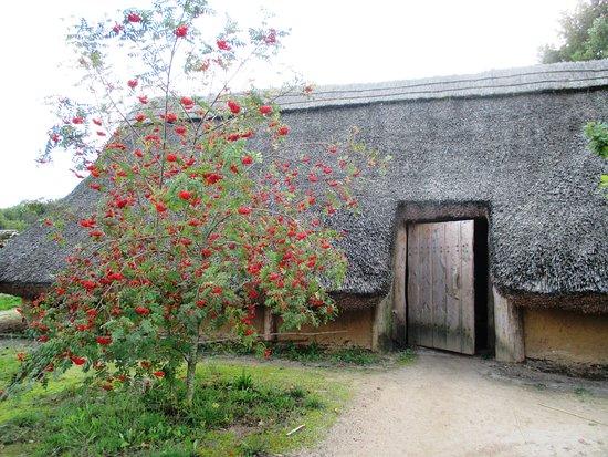 Borger, Belanda: вот так древние мегалиты становились домом для древних людей